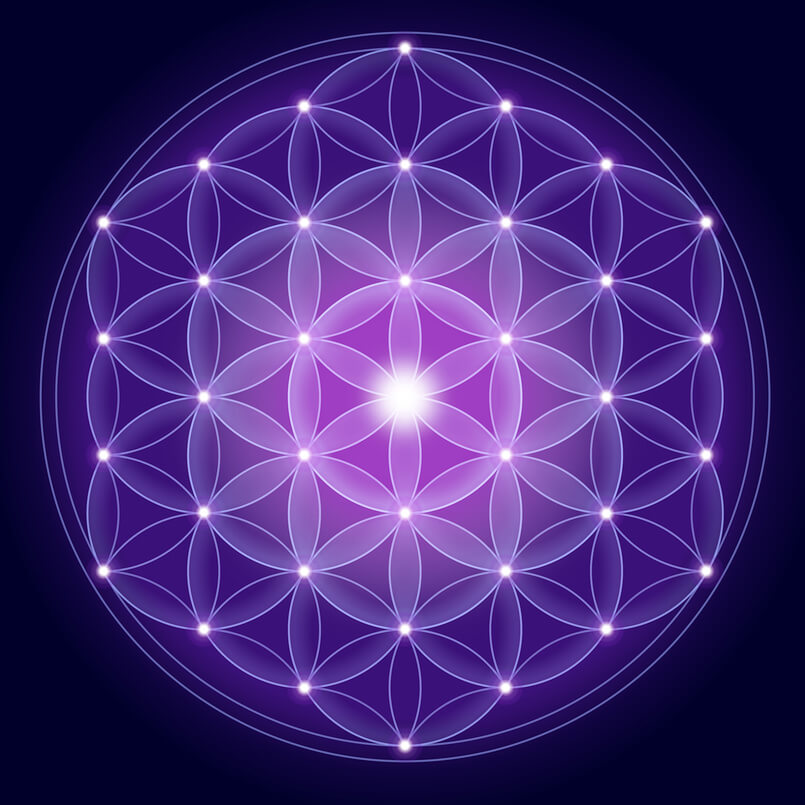 The Flower of Life contains Metatron's Cube