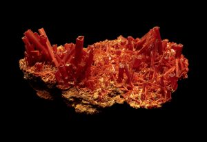 Crocoite supports healthy and graceful transitions, including through death to new life.
